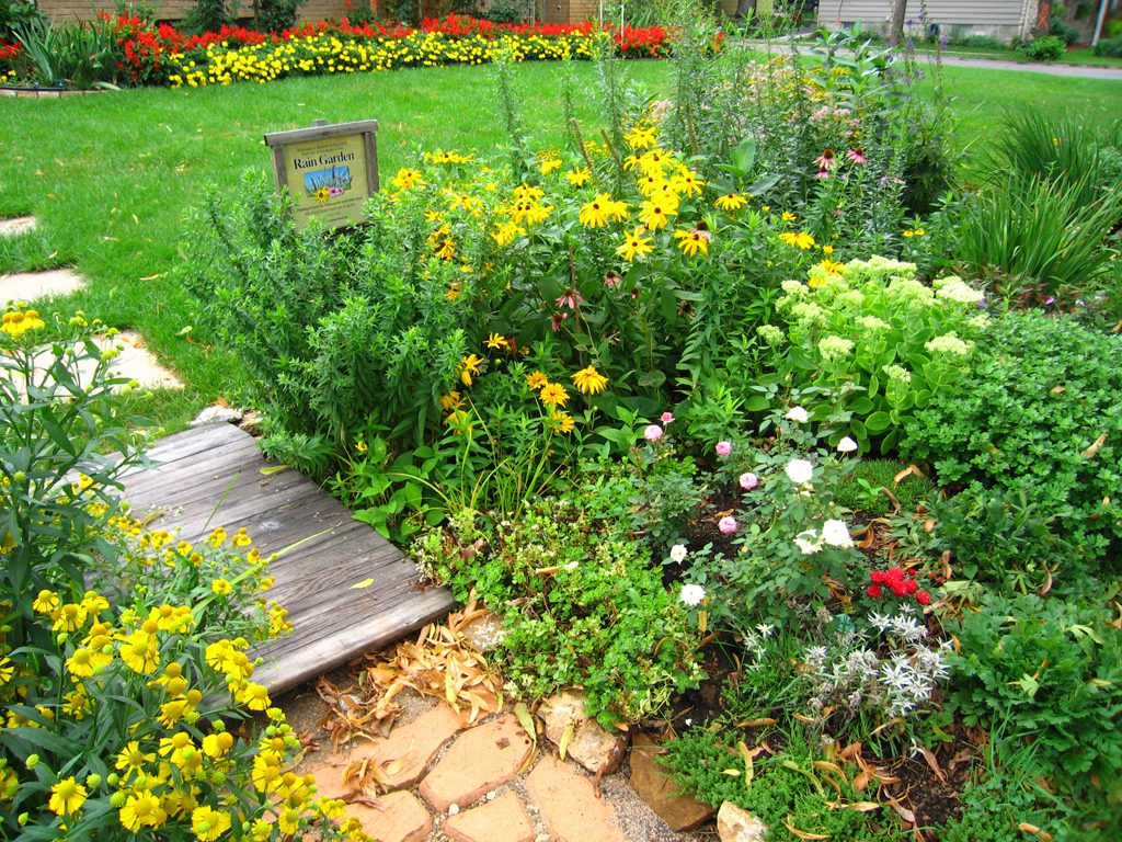 2007 Best Residential Raingarden Award photo by Lori Anderson